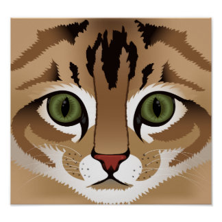 Cute tabby cat face close up illustration poster