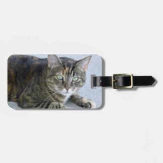 Cute Tabby Cat Photo Luggage Tag