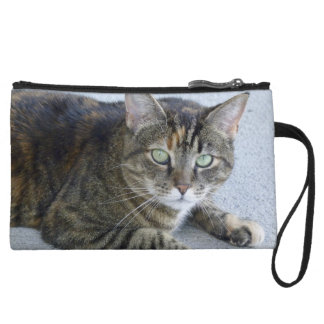Cute Tabby Cat Photo Wristlet Clutch