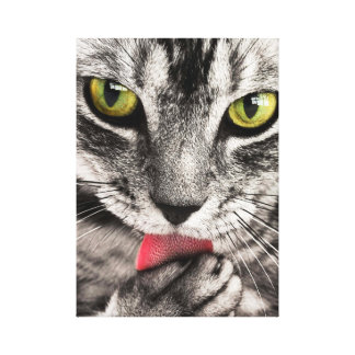 Cute Tabby Cat Stretched Canvas Print
