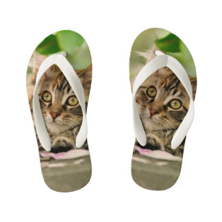 Cute Tabby Maine Coon Cat Kitten Fluffy Photo Kids Kid's Flip Flops
