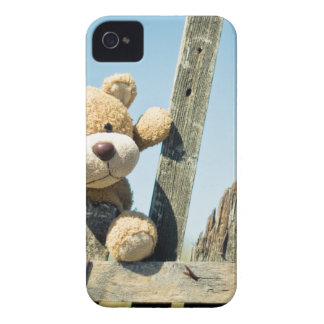 Cute Teddy iPhone 4 Cases