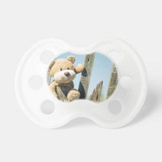Cute Teddy Pacifier