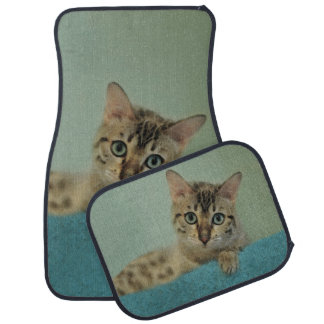 Cute Things Come in Kitty Packages Car Carpet