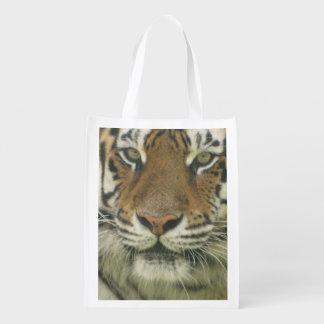 Cute Tiger Market Tote