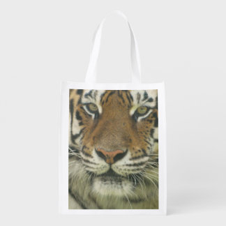 Cute Tiger Grocery Bags