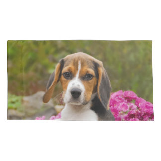 Cute Tricolor Beagle Dog Puppy Photo - Pillowcover Pillowcase