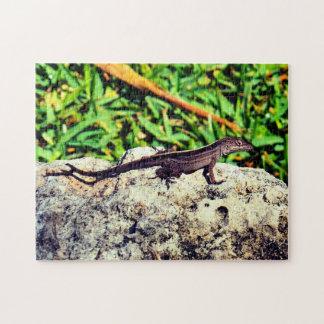 Cute Tropical Lizard Jigsaw Puzzle