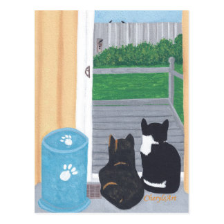 Cute Two Cats Bird Watching Deck Postcards