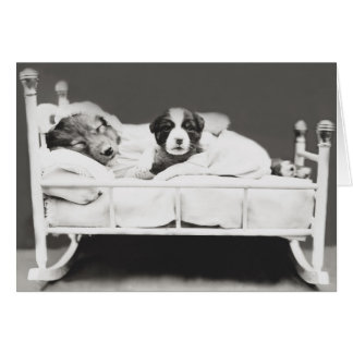 Cute Vintage Sleeping Dog and Puppy Card