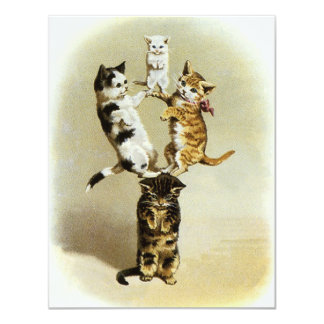 """Cute Vintage Victorian Cats Kittens Playing, Humor 4.25"""" X 5.5"""" Invitation Card"""