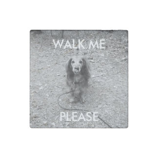 """Cute """"walk me"""" long haired dachshund photo magnet stone magnets"""