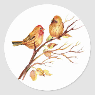 Cute Watercolor Bird Couple on Tree Branch art Classic Round Sticker