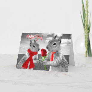 Cute Wedding Anniversary Woodland Squirrel Love Card