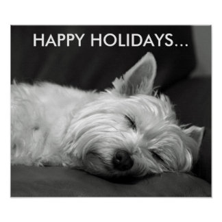 Cute West Highland Terrier Dog Poster