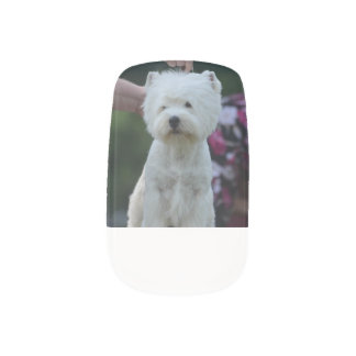 Cute West Highland White Terrier Fingernail Decals