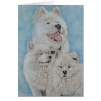 Cute white akita long coat realist portrait art card