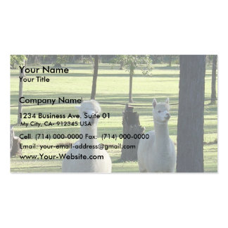 Cute White Alpaca Boys In Green Meadow Full Of Tre Business Card