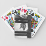 CUTE WHITE CAT HEAD UPSIDE DOWN ON LADDER PLAYING CARDS
