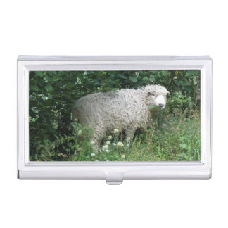 Cute White Fluffy Sheep Eating Card holder Case For Business Cards