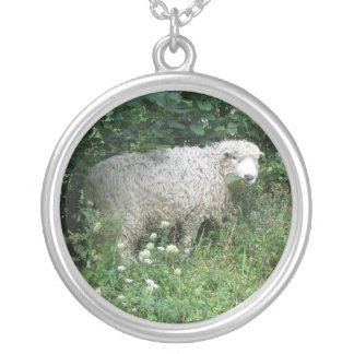 Cute White Fluffy Sheep Eating Necklace