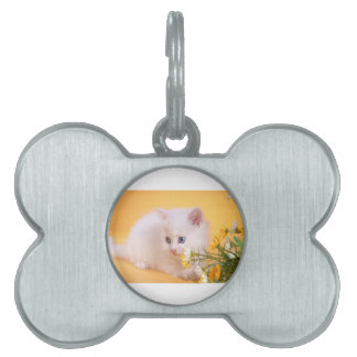 Cute White Kitten Plays With Flowers Pet Tags