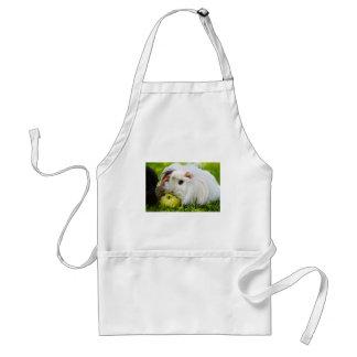 Cute White Long Hair Guinea Pig Eating Apple Standard Apron