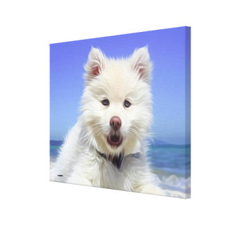 Cute White Poodle Dog Lying On Beach Canvas Print