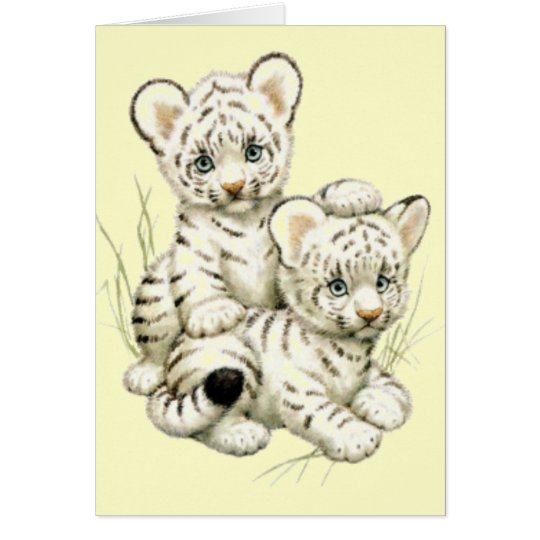 Cute White Tiger Cubs Card