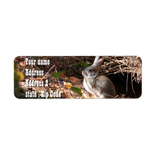 Cute wild bunny address labels