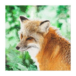 Cute Wild Red Fox Drawing Canvas Print