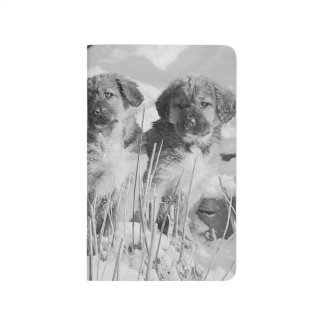 Cute Winter Puppies Snowy Dogs Outside Adorable Journal