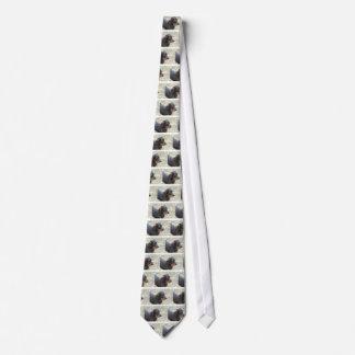 Cute Wire Haired Daschund Tie