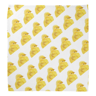 Cute yellow baby Chick Bandana