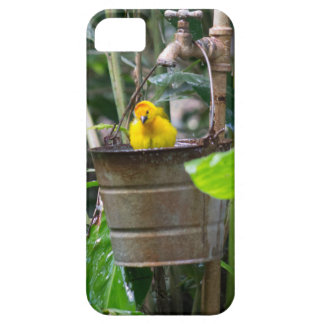 Cute, yellow bird bathing in a bucket iPhone 5 cases