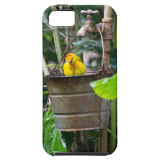 Cute, yellow bird bathing in a bucket iPhone 5 covers