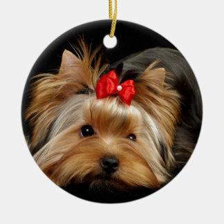 Cute yorkie ceramic ornament