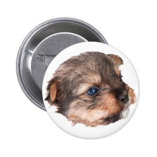 Cute Yorkshire Face 2 Inch Round Button