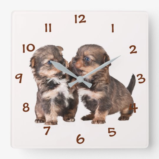 Cute Yorkshire Puppies Wallclocks