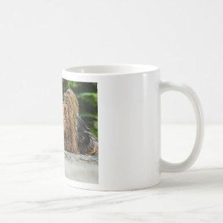Cute Yorkshire Puppy Coffee Mug