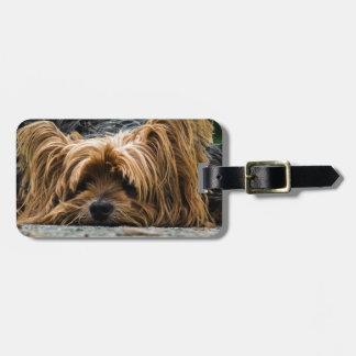 Cute Yorkshire Puppy Luggage Tag