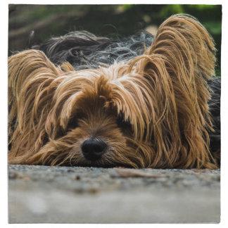 Cute Yorkshire Puppy Napkin
