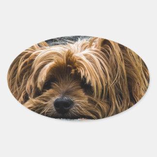 Cute Yorkshire Puppy Oval Sticker