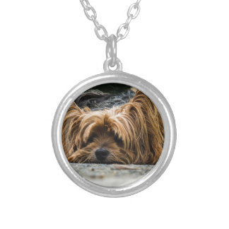 Cute Yorkshire Puppy Silver Plated Necklace
