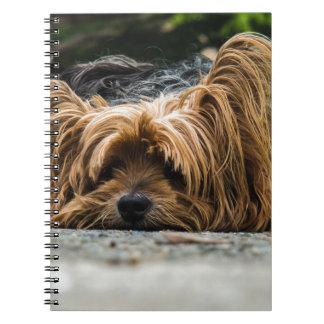 Cute Yorkshire Puppy Spiral Notebook