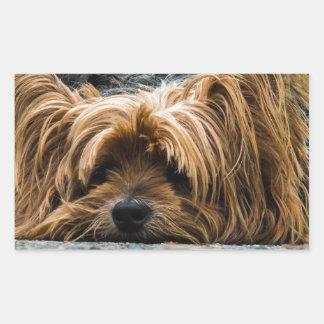 Cute Yorkshire Puppy Sticker