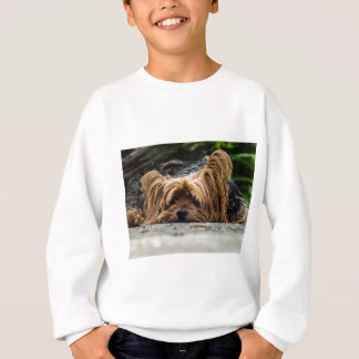 Cute Yorkshire Puppy Sweatshirt