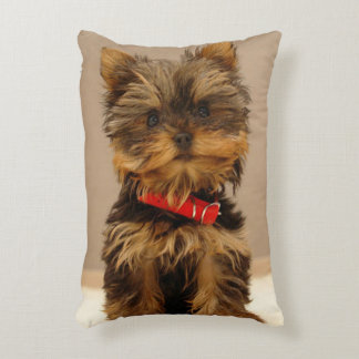 Cute Yorkshire Terrier Accent Pillow