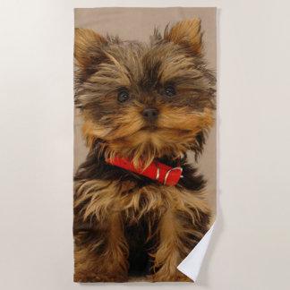 Cute Yorkshire Terrier Beach Towel