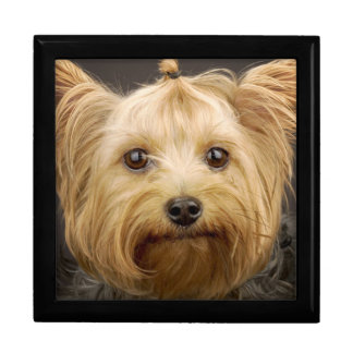 Cute Yorkshire Terrier Gift Box